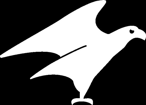 Aigle Illimité